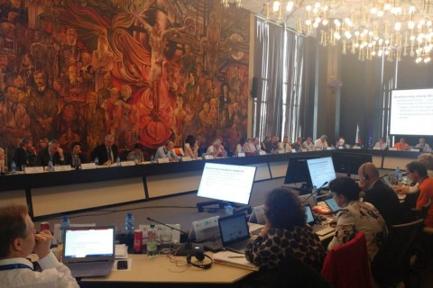 ESAP and WB PESs at Annual Meeting of the EU PES Network in Sofia, 8 June 2018 (Photo: RCC/Vanja Ivosevic)