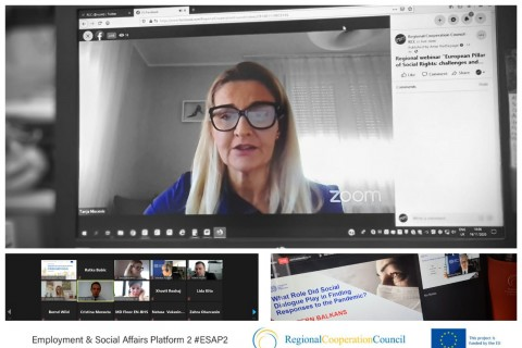 Regional webinar 'European Pillar of Social Rights: challenges and opportunities for the Western Balkan economies' held on 19 November 2020